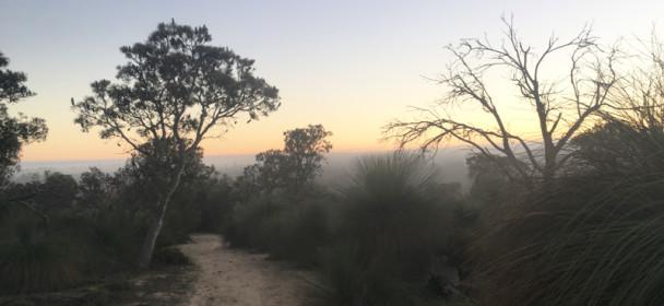Yaberoo Trail Ultra